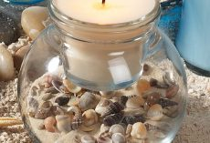 20 DIY Seashell Home Decor Ideas
