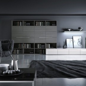 12 Black And White Grey Living Room 665x474  Black & White Interiors  Pict  4