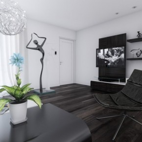 15 Black And White Living Room 665x442  Black & White Interiors  Wallpaper 2