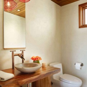 Careful Space Planning Tropical House Sink and Toilet