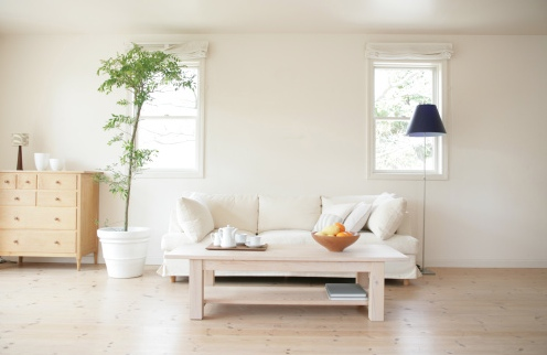 20 Uncluttered Living Room Ideas