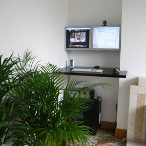 Areca Palm Indoors  Indoor Plants that Purify Air in Living Spaces  Picture  2