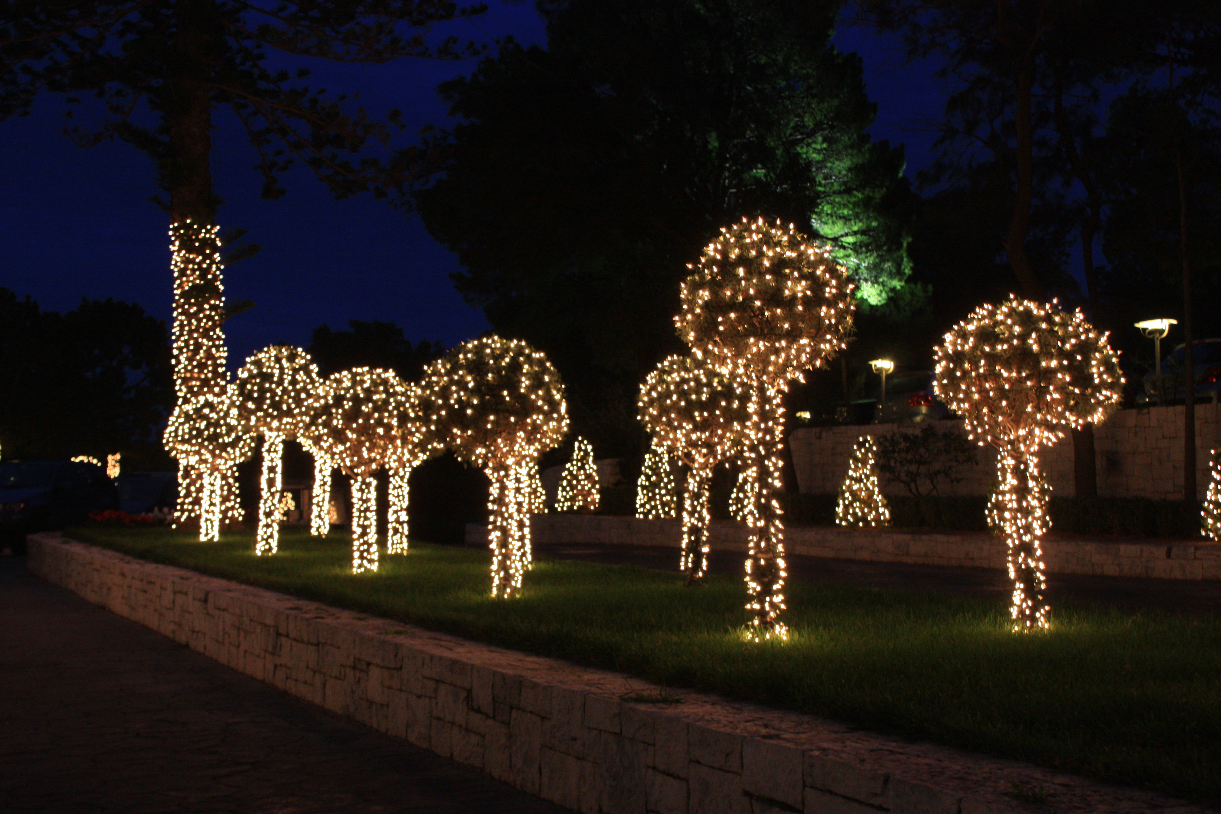 together with Christmas Light Decoration Ideas besides JCPenney ...
