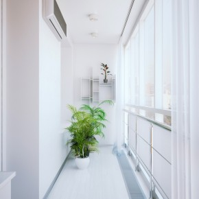 Corridor Plant  Small Apartment Design in St.Petersburgh  Pict  6