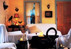 20 Halloween Living Room Ideas