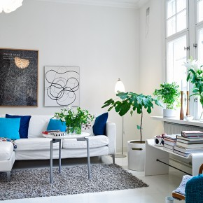 Living Room Plants  A Scandinavian Beauty  Wallpaper 1