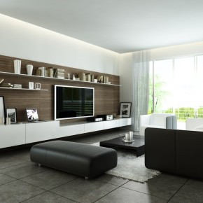 Modern Style Living  Living Rooms Round Up  Pict  10
