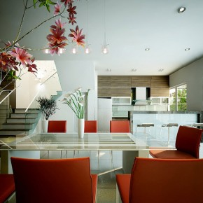 Red White Dining  Dream Home Interiors by Open Design  Image  12