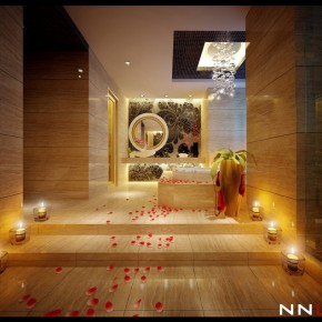 Steps To Bath  Dream Home Interiors by Open Design  Picture  1