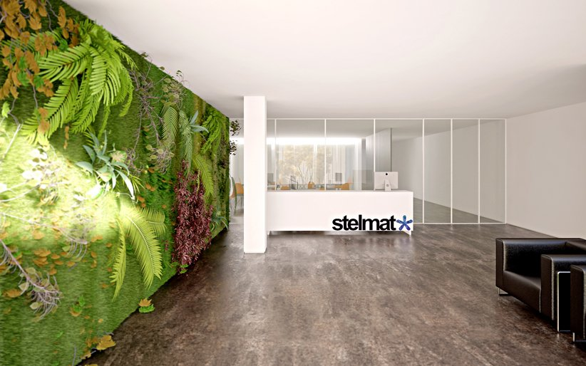 Vertical Wall Garden Beautiful Offices of Stelmat