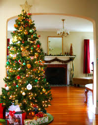 20 Themed Christmas Tree Home Decorations
