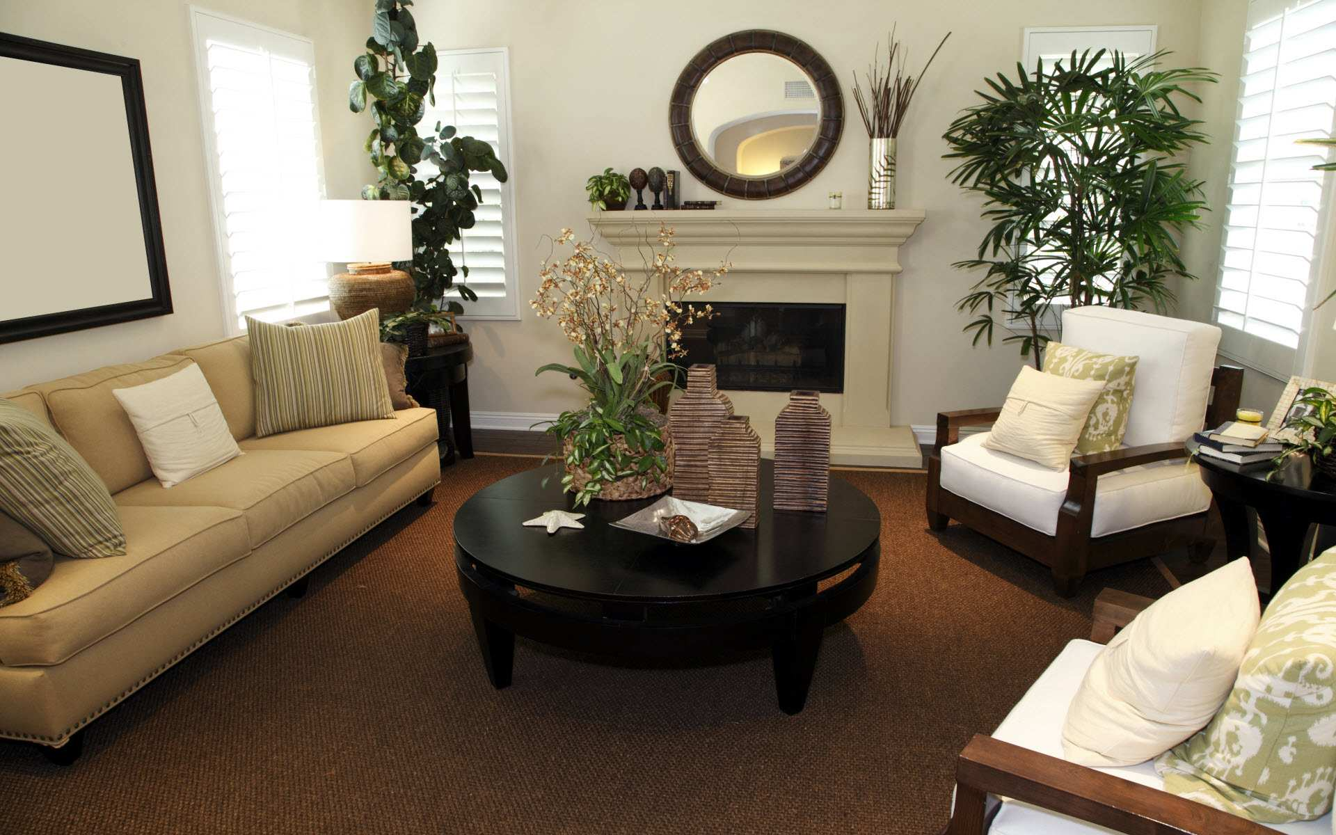 Elegant Living Room Decorating Ideas Pictures Wall