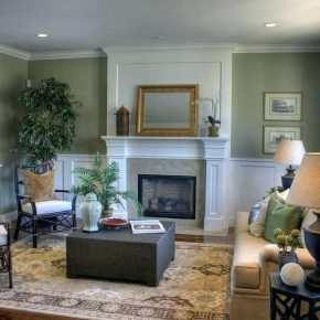 Sage Living Room Walls Ayathebook